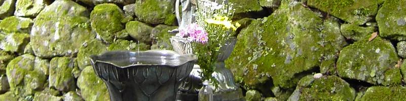 Reiki-Fit Banner - Herz- und Hals-Chakra-Einweihung