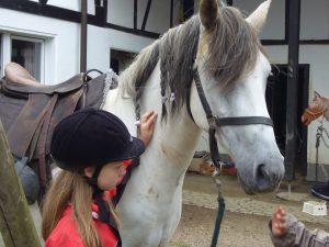 Reiki-Kindergeschichten - Gebrochenes Pferdebein
